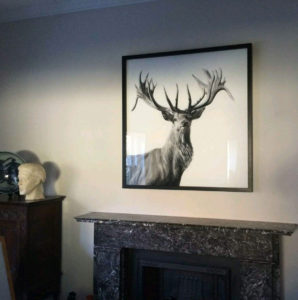 Lucy Boydel Framed Artwork 12