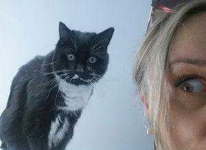 Lucy Boydell Framed Artwork - Cat
